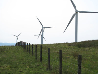 Image of a wind farm.